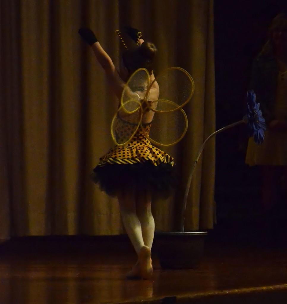 dance bee