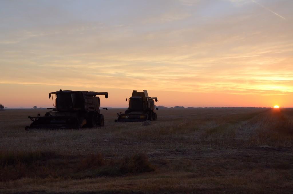 Combines in Saskatchewan