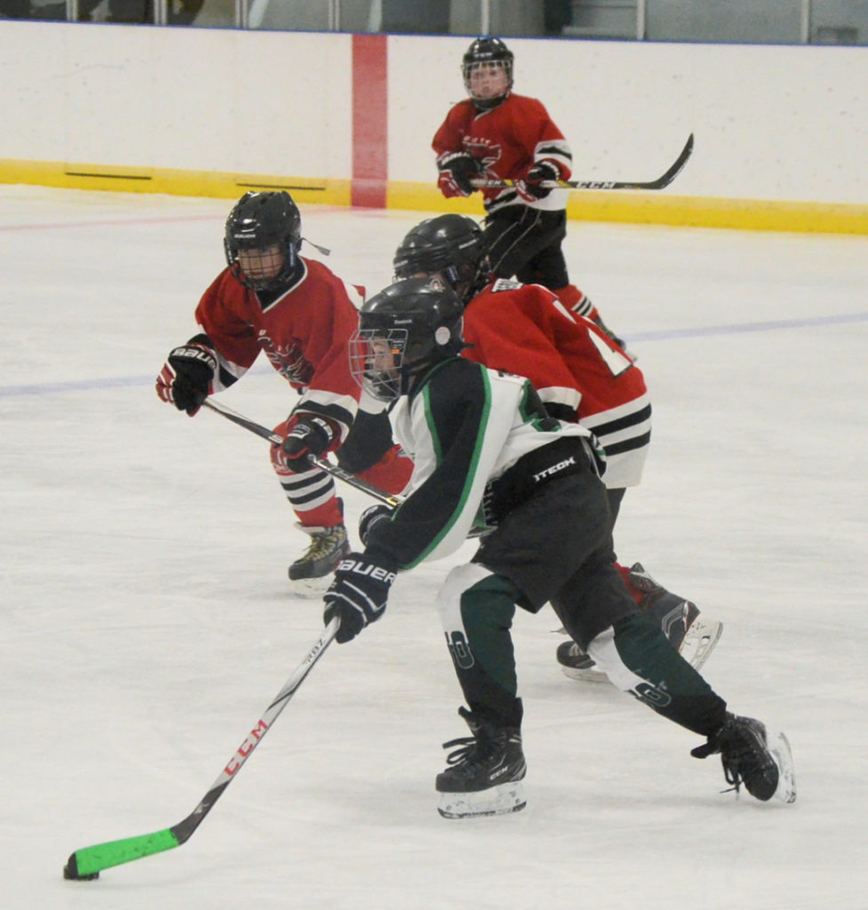 kids' ice hockey in Wilkie Saskatchewan